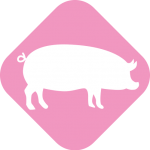 icono-biogas