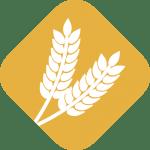 ICONO-AGRICULTURA