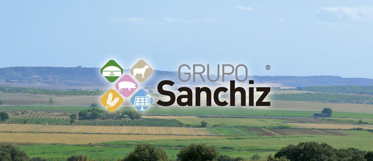 GRUPO SANCHIZ LOGO